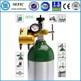 2015 o Made o mais novo em En ISO7866/GB1640 Small Portable Oxygen Cylinder de China