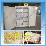 Máquina Growing automática do Sprout de feijão