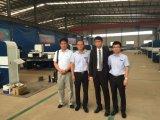Servo macchina della pressa meccanica dell'azionamento di CNC Es300 con il prezzo più basso