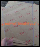 Strato trasparente del PVC di migliore qualità Gw7004