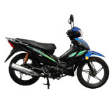 [جينشنغ] درّاجة ناريّة نموذج [سج110-ه]