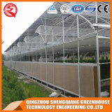 China-Landwirtschaft Einzeln-Überspannung PO Film-Gewächshaus mit Stahlrahmen
