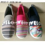 Späteste preiswerte Einspritzung der Form-Dame-beiläufige Schuhe Sports Schuhe (PY377)