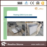 G603 옥외와 실내를 위한 밝은 회색 화강암 돌 지면 도와