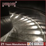 Marmor tritt Treppenhaus des Lichtbogen-LED (DMS-L1001)