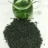 Tè verde organico dell'alta montagna