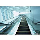Эскалатор высокого качества с безволосой нержавеющей сталью