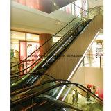 Поднимая эскалатор 6m с безволосой нержавеющей сталью