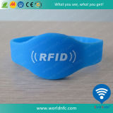 Wristband do silicone RFID do sistema do comparecimento de escola
