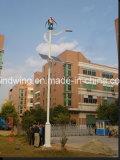 600W24V 가정 사용 (200W-5kw)를 위한 수직 축선 바람 발전기