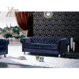 Cuoio di stile o sofà europeo del tessuto impostato (NCS13)