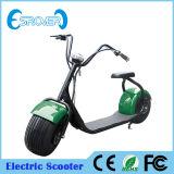 La motocicleta eléctrica más popular de la bicicleta de 2016 dos ruedas (Esrover E5)