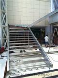 Gebildet Edelstahl-hölzernen Glastreppenhaus im China-304