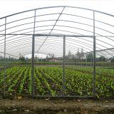 De hete Serre van de Tunnel van de Aardappel van de Landbouw van de Verkoop Goedkope Poly