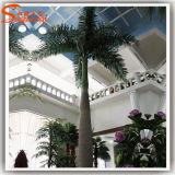 屋内装飾的なファイバーガラスの人工的なココヤシの木の木