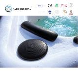 STAZIONE TERMALE della piscina di rinforzo vetroresina calda con il sistema della balboa