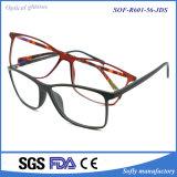 Soem-Sicherheits-Form-roter Anzeigen-optische Glas-Rahmen für Leser