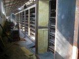 Минеральная доска волокна, акустический потолок, ые материалы