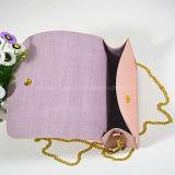 O mini mensageiro bonito da pureza 2016 ensaca o saco do mensageiro das mulheres do plutônio