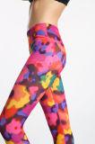 Флористические напечатанные гетры сетки пригодности для женщин