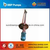 Chke a appliqué largement la pompe submersible de piscine de pompe/