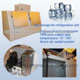 Merchandiser del ghiaccio dei doppi portelli 600L per ghiaccio insaccato stazione di servizio