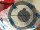 614 13-17ysx Eccentric Cylindrical Roller Bearing