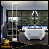Lámparas de suelo del proyecto LED del hotel del diseño moderno (KF423)