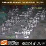 2 Zoll-elektrische Pumpe