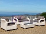 jeu de sofa de rotin de réception de club de jardin de contact du thé by-434