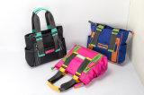 QQ draag de Handtassen van de Hete Verkopende Gecombineerde van de Kleur Nylon Dame van de Schouder (HQ)