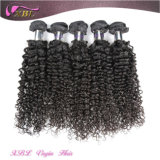 Raw Natural Curly Hair Extensions FULL Cuticle Unprocessed Brazilian Curly Hair