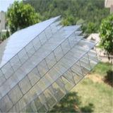 Hoja multi transparente del policarbonato de la pared