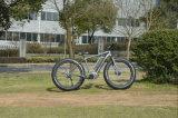 "гора 26 "" 250-500W E-Велосипед Tde10z"