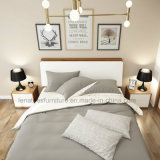 Bj03A OEM 호텔 프로젝트 품목 현대 호텔 침대