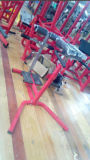 Equipamento de ginástica / cadeira romana e extensão traseira (SW-8009)