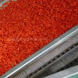 Высушенные мушмулой ягоды Goji Himalayan Goji