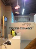 Calentador radiante del calentador al aire libre inmediato (impermeable)