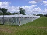 HDPE 100% новый аграрный или сеть доказательства насекомого парника для окна
