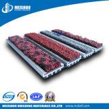 Ligne nattes commerciales en aluminium de garniture d'EPDM de porte durable de charnière