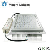 Alta luz brillante al aire libre del pabellón LED con Ce