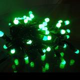 Kaltes Reis-Zeichenkette-Licht des Weiß-LED mit blinkendem Effekt
