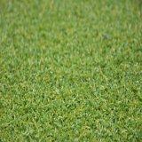 Relvado sintético de Gfp para o golfe