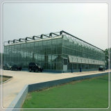Renforcé / Trempé Effacer Float Horticultural Greenhouse Sheet Glass