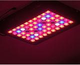 o diodo emissor de luz do painel 300W cresce para vegetais de frutas da planta
