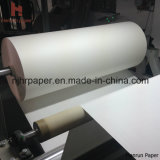 "126 "" /3.2m 120GSM Sublimation Transfer Paper Roll für Banner"