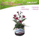 Potenciômetro de flor reusável do jardim Oh-Gf-015 Ecofriendly