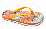 女性(RF16200)のための夏の花のスリッパの双安定回路の靴