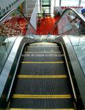 Satety et haut escalator extérieur d'Effciency