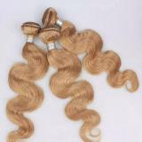 倍によって引かれるWeft波の人間の毛髪の拡張スペイン人の毛